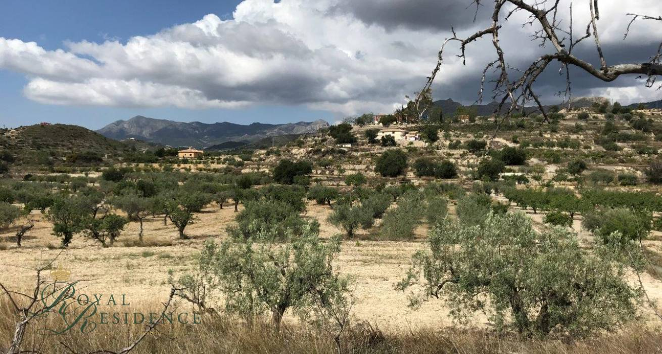 Relleu, Costa Blanca, Spain, ,Plot,Sale,1676